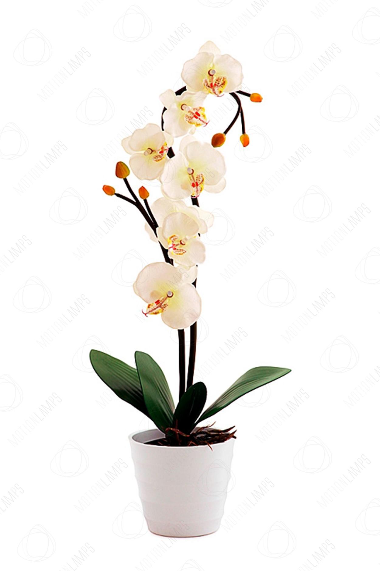 Светодиодный светильник Орхидея белая в Москве