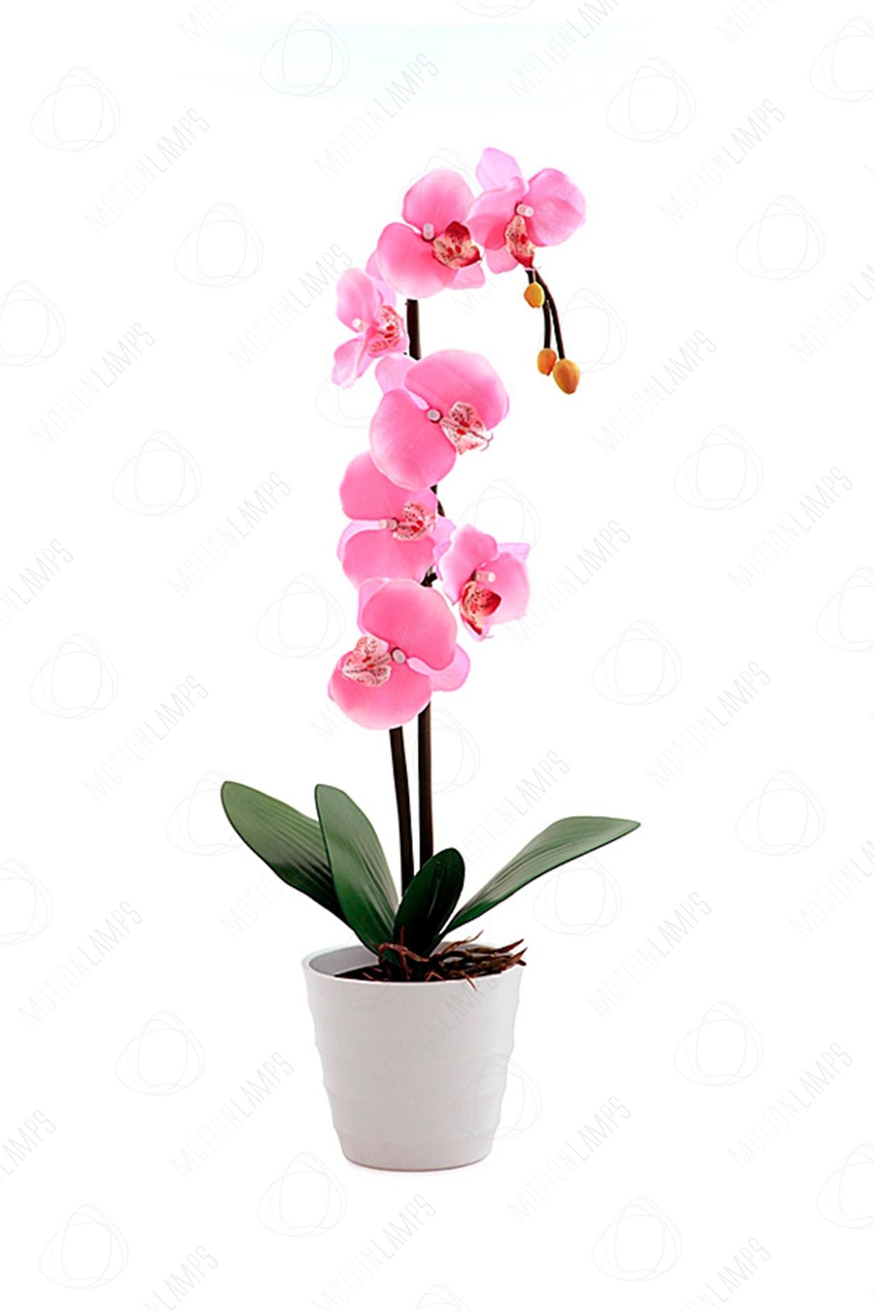 Светодиодный светильник Орхидея розовая в Москве