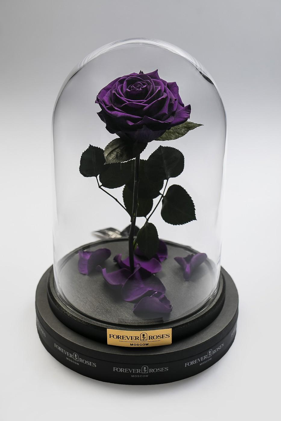 Роза в колбе (фиолетовая) на прямом стебле, 33 см в Москве