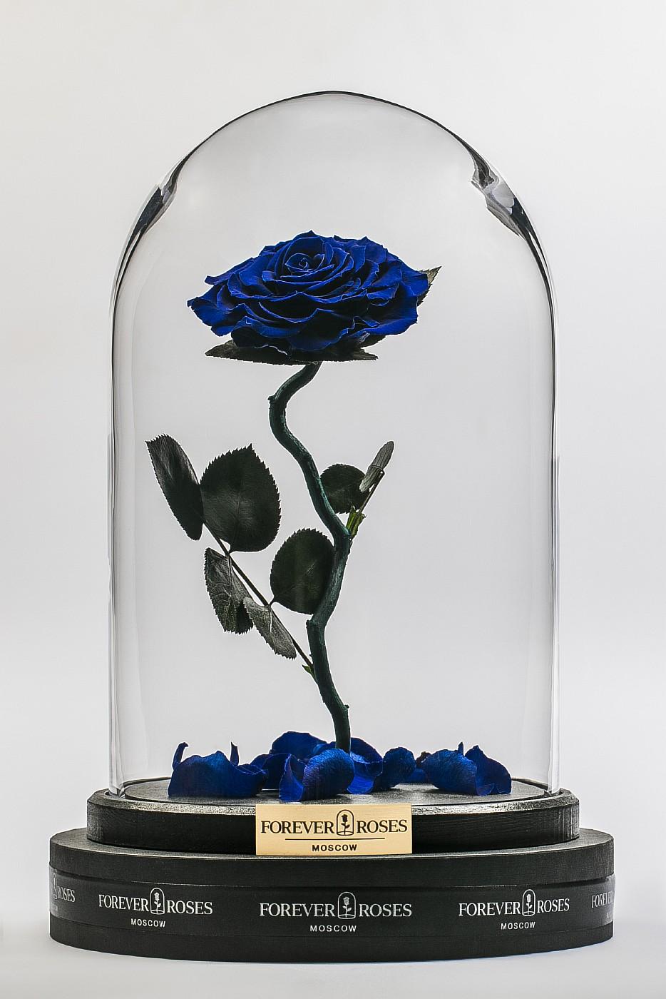 Роза в колбе (синяя) на изогнутом стебле, 33 см в Москве