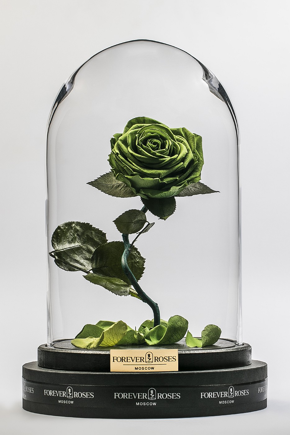 Роза в колбе (зеленая) на изогнутом стебле, 33 см в Москве