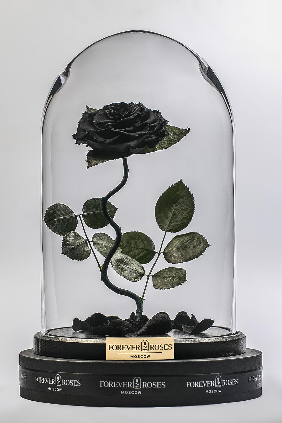 Роза в колбе (черная) на изогнутом стебле, 33 см в Москве