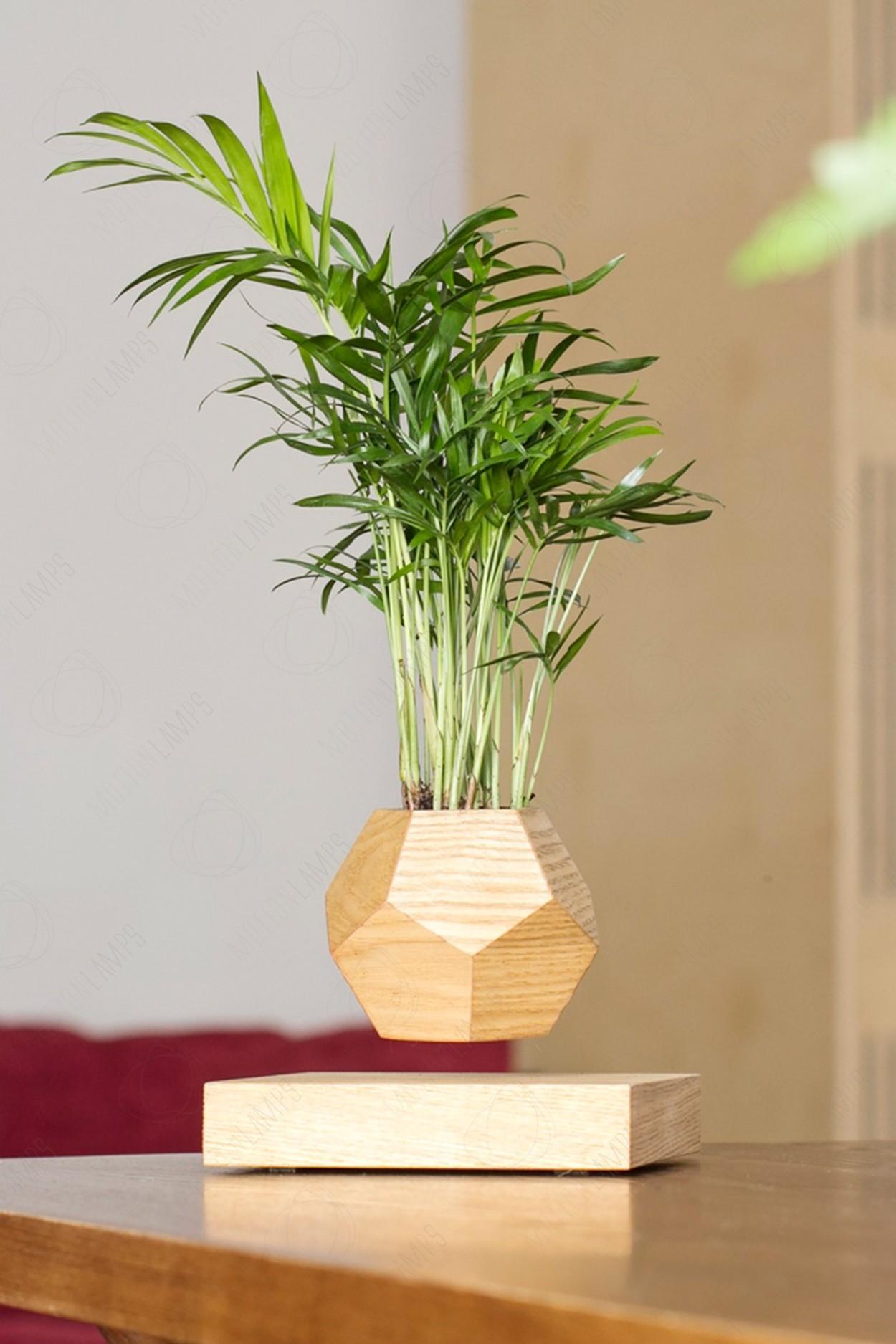 Левитирующий горшок LePlant Wood светлый (для растений) в Москве